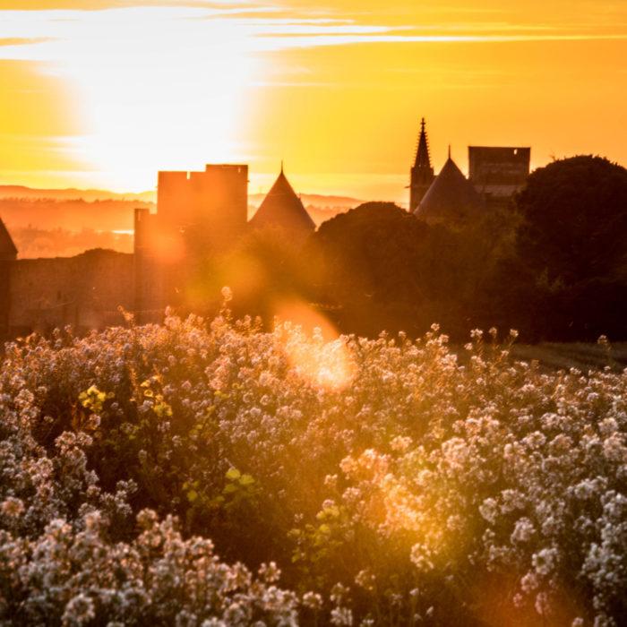 cité-de-carcassonne