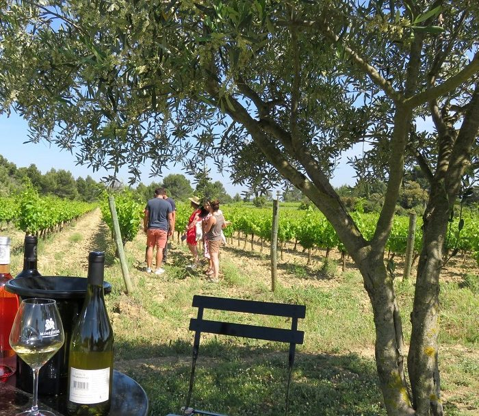 visite-guidee-vin-winetour-carcassonne-minervois-corbieres-cabardes-malepere