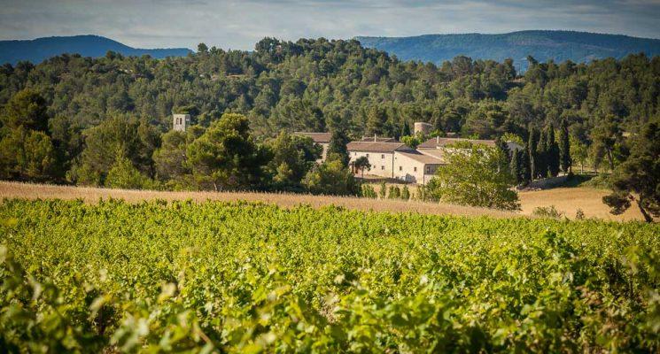 Chateau Saint Jacques d'Albas-Laure Minervois_2