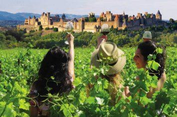 photo-balades-vigneronnes-2019-1200×900